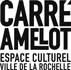 Carre-Amelot-2015