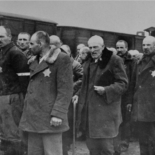 Auschwitz-Wartime 3